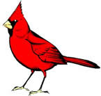 Cardinal Construction